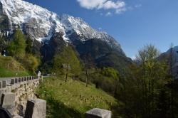 Альпийские пейзажи по дороге впечатляют
