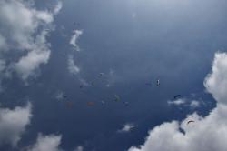 Паравоз из парапланов уходит в небо